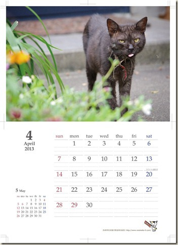 2012-1121_commucat_april